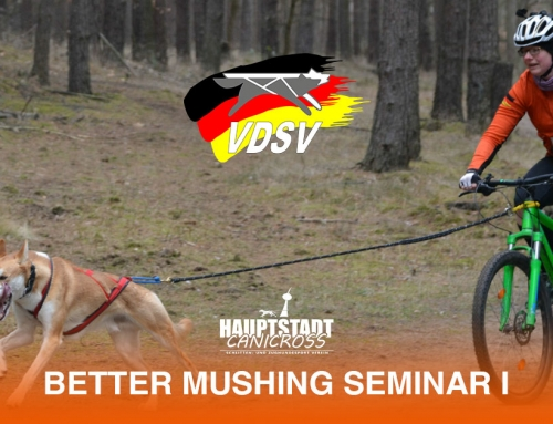 Better Mushing Seminar 13.04.2019 Berlin