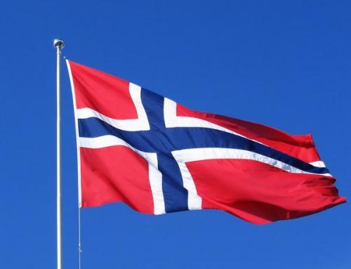 News zu den mysteriösen Hundeerkrankungen mit Todesfolge in Norwegen