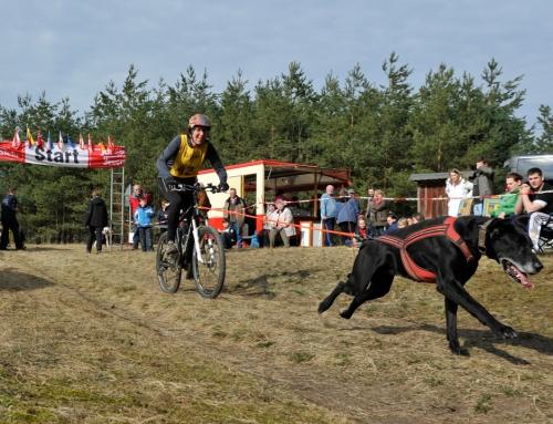 Ausschreibung Schlittenhunde-Wagenrennen Kunrau – 14. und 15. März 2020