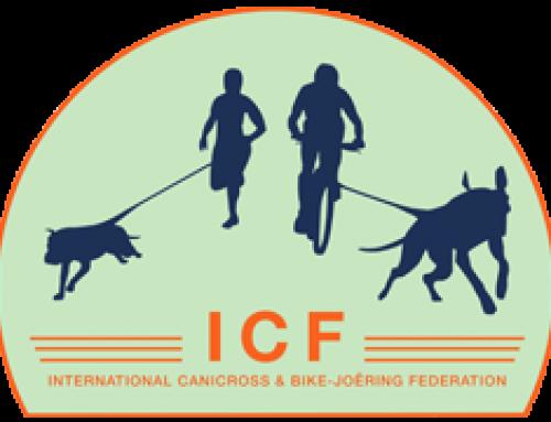 Informationen zur ICF WM