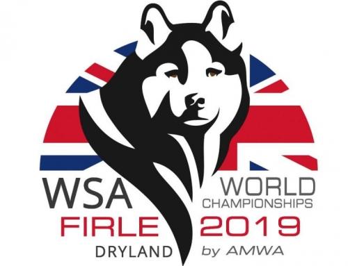 Bericht über die WSA WM Dryland 2019