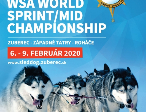 WSA WM 2020 snow Sprint/MID in Zuberec