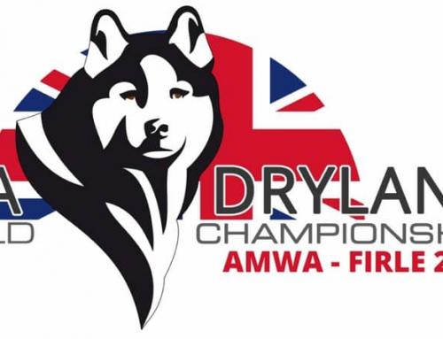 WSA Weltmeisterschaft Dryland 2019
